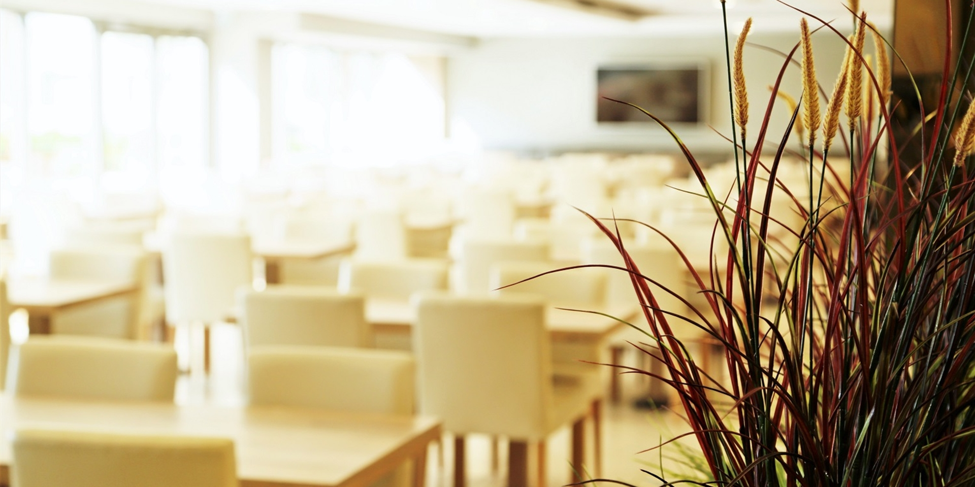 Restoran & Kafe